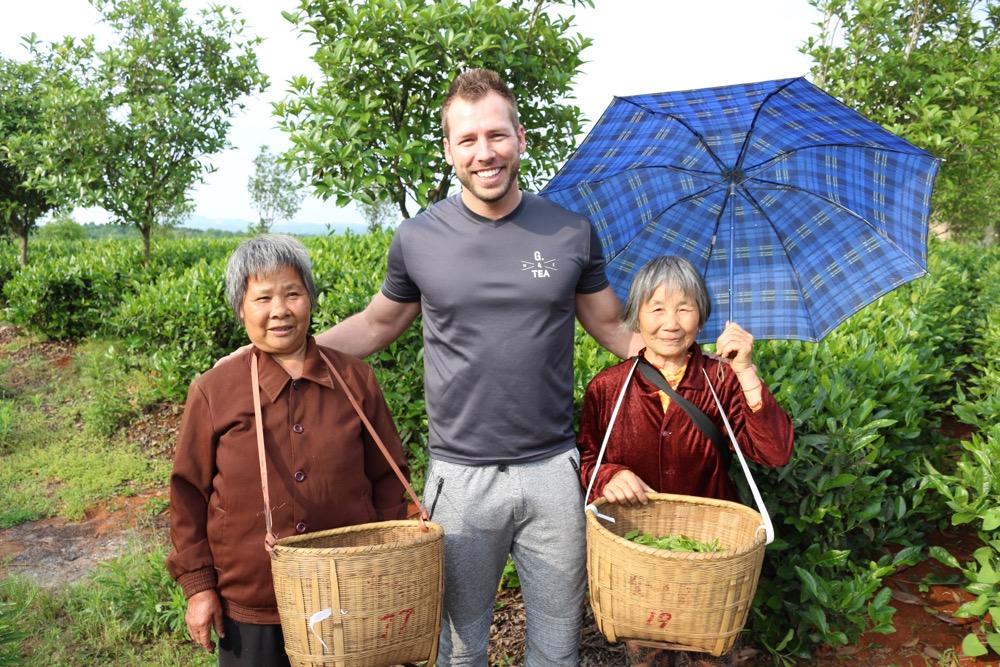 cajova plantaz v Hunanu - Cina